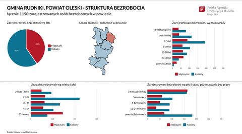Statystyki Powiat Oleski.png