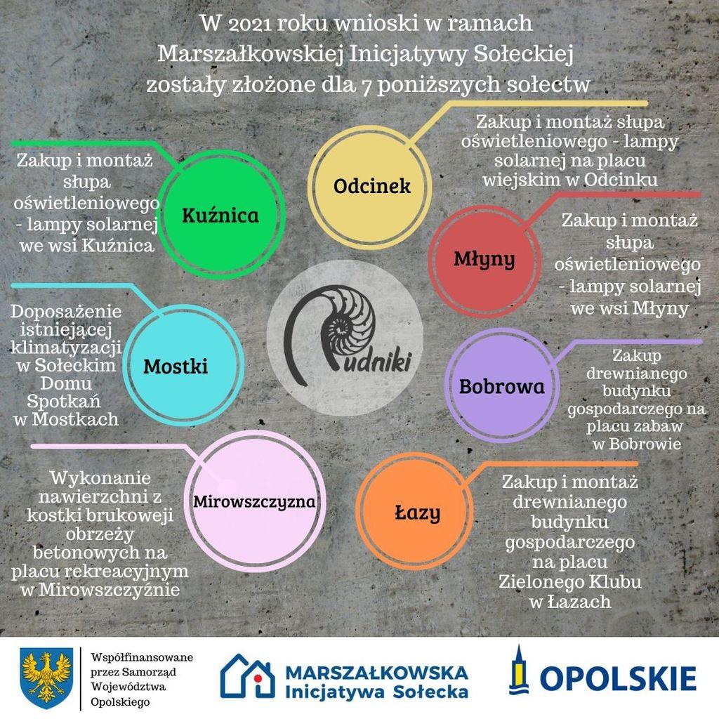 Współfinansowane przez Samorząd Województwa Opolskiego.jpeg