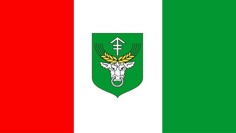 XX-lecie flagi Gminy Rudniki.jpeg