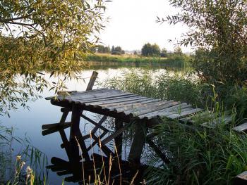 Staw w okolicy Rudnik