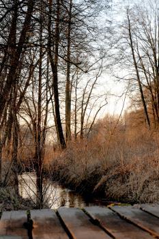 Okolice Banasiówki - rzeka Prosna