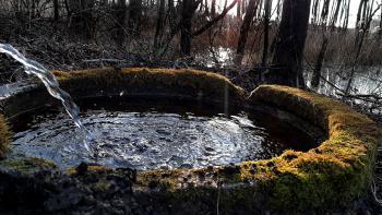 Okolice zalewu - Sołectwo Młyny