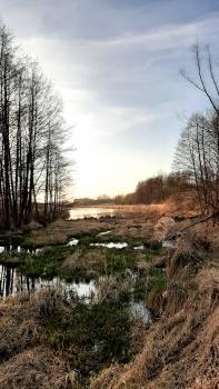 Wczesna wiosna nad zalewem - Sołectwo Młyny