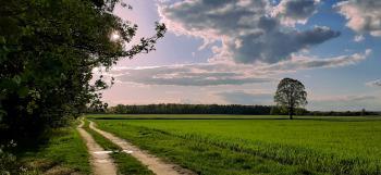 Rowerem po gminie - Sołectwo Dalachów