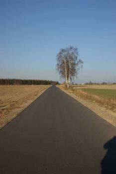 Budowa drogi dojazdowej do gruntów rolnych Łazy-Młyny.jpeg